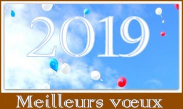 Dimanche 27 janvier 2019 à 12h - Cérémonie des voeux à la population villefranchoise
